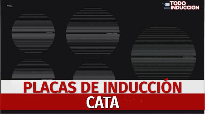 Placas de Inducción Cata